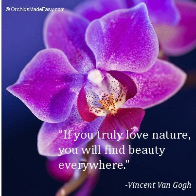 150 best orchid quotes images 52 best orchid photos quotes images on photo quotes picture quotes and quote pictures