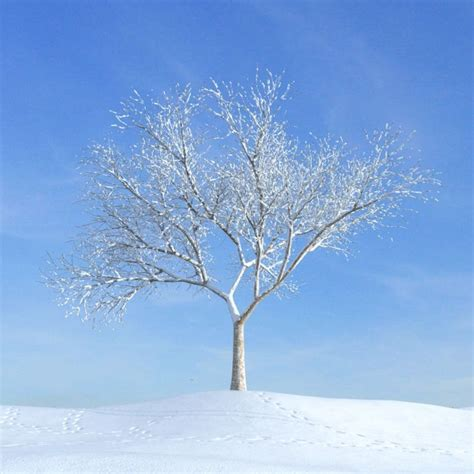 bare tree on a snow covered hillside in th 3d model