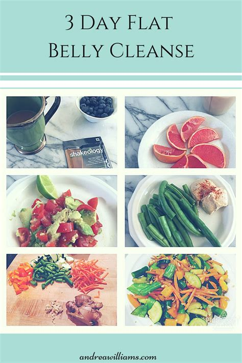3 Day Flat Belly Detox by 3 Day Refresh Andrea Williams