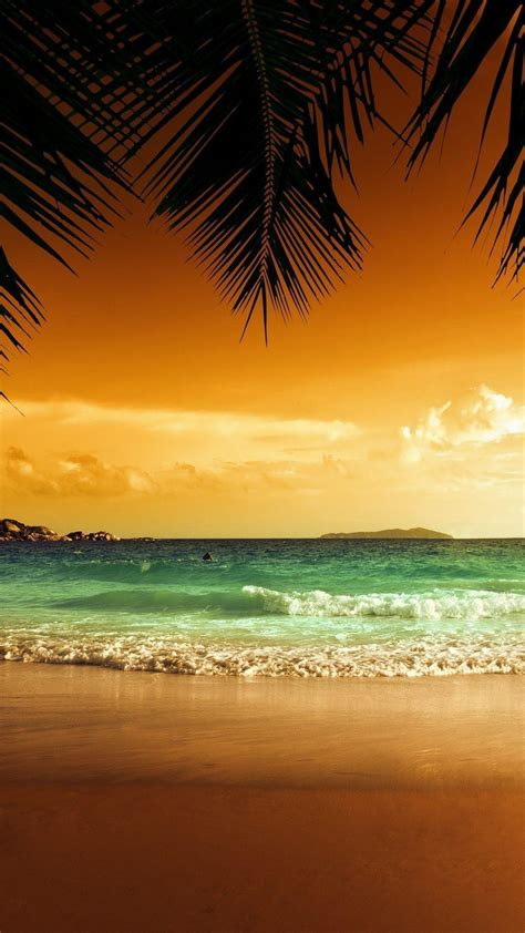 wallpaper for iphone beach tropical wallpapers 2017 wallpaper cave