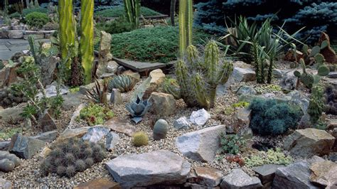 Rocks In The Garden Impressive Rock Garden 6 Best Rock Garden Ideas Yard Landscaping With Rocks Gardensdecor