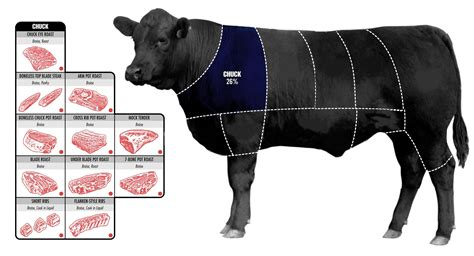 what is the best cut how to pick the perfect cut of beef business insider