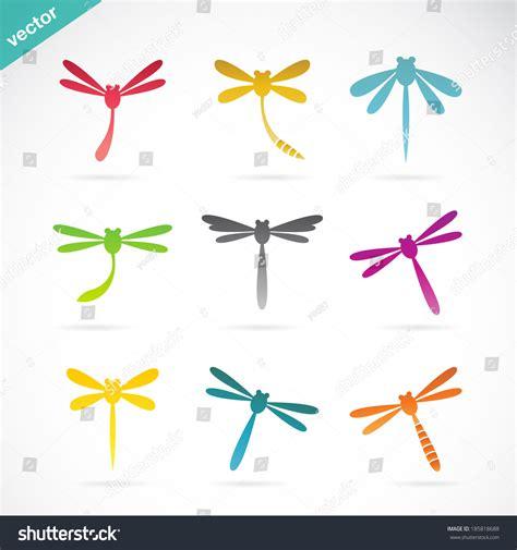 wyatt design group website design dragonfly design group vector group of dragonfly on white background vector