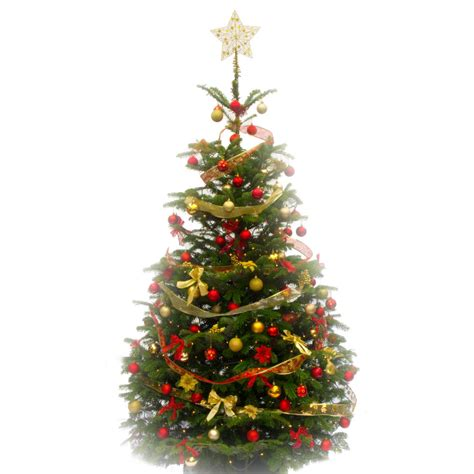 Charming Christmas Trees 5ft #2: Red_Gold_festive_decorated_tree.jpg