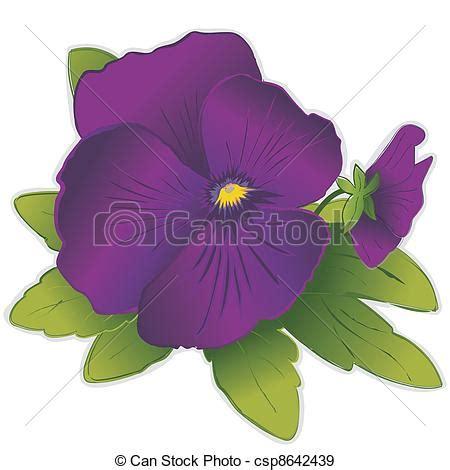 viola fiore disegno vettori eps di viola viola pensiero fiori viola