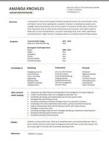 sales executive cv template example marketing executive