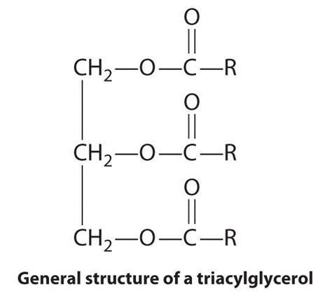 molecules  life chemistry libretexts