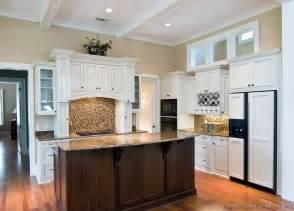 white and dark kitchen cabinets traditional kitchen cabinets photos design ideas