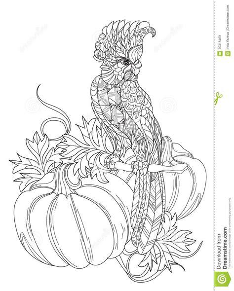 Boho Bird Coloring Page Marcos Para Fotos Con Flores