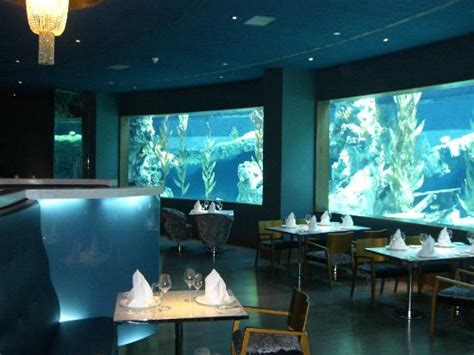 design aquarium restaurant aquarium restaurant picture of mardan palace antalya