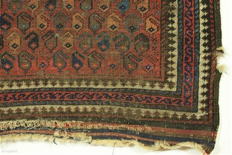 Just Rugs by Antique Baluch Rug Rug Just Picked