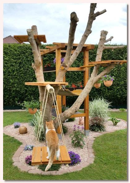 outdoor cat furniture trees best 25 outdoor cat tree ideas on diy cat