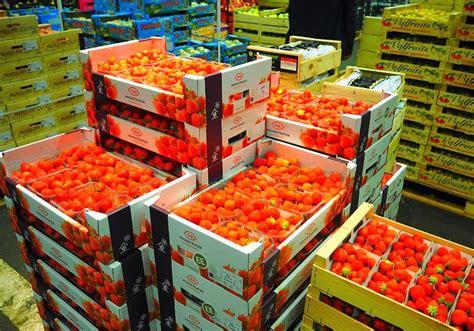 fruits rungis visite du march 233 international de rungis