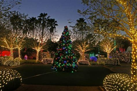 flordia xmas trees here s where to see lights in ta bay