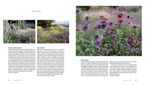 Planting A New Perspective planting a new perspective by noel kingsbury piet oudolf