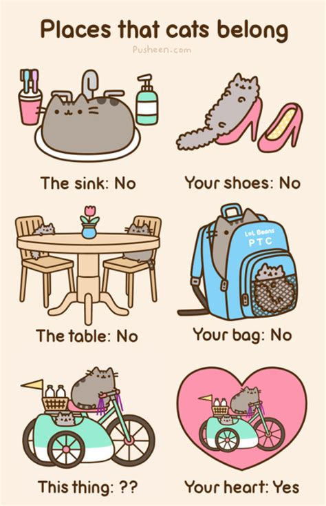 Pusheen Cat Meme - strangeness and charms inspiration pusheen the cat