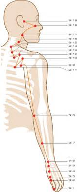 Small intestine acupuncture points all about acupuncture