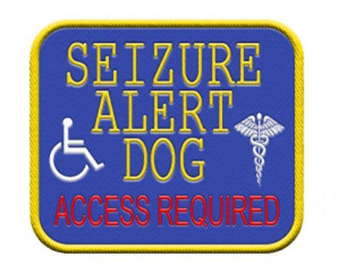 service seizure service gear seizure alert access required