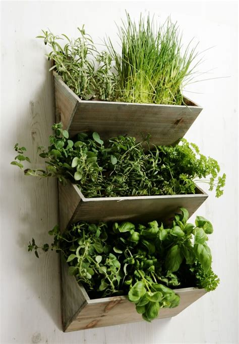 wall herb planter mother s day gift guide growing family