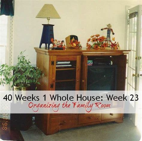 One Of The Best Weeks In The Whole Year Fashion Week by 17 Best Images About 40 Weeks 1 Whole House Organize 365
