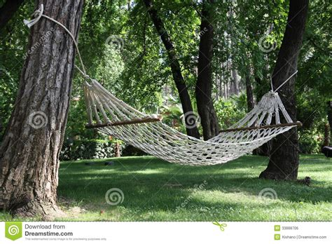 Hammock Trees hammock among two trees royalty free stock image image