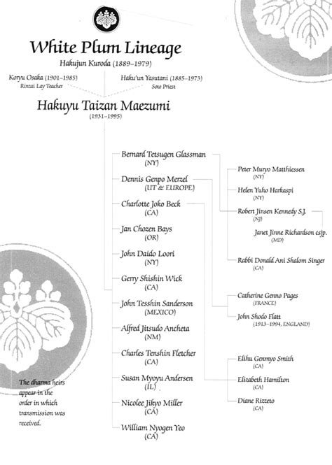 main lineages  modern soto