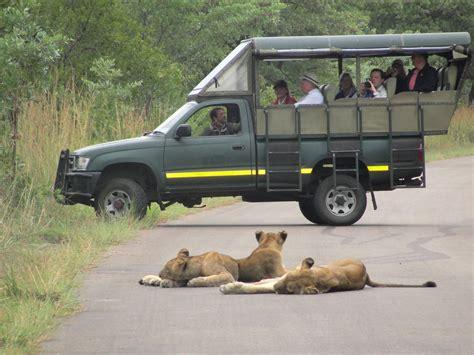 Kruger Park Safaris Ranger Blog: Kruger National Park Safari with Rene Visser, C.B Jonker, Ann