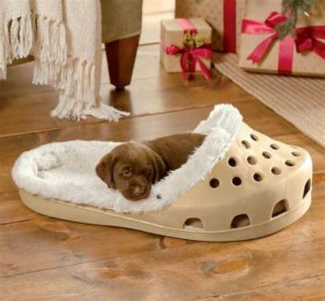 cool bed cooles hundebett in form einem schuh