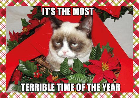 Grumpy Cat Meme Christmas - the best of grumpy cat s christmas smosh