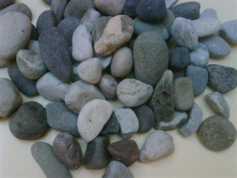 names of rocks that contain gold day 22 igneous rocks associated with gold and metamorphic