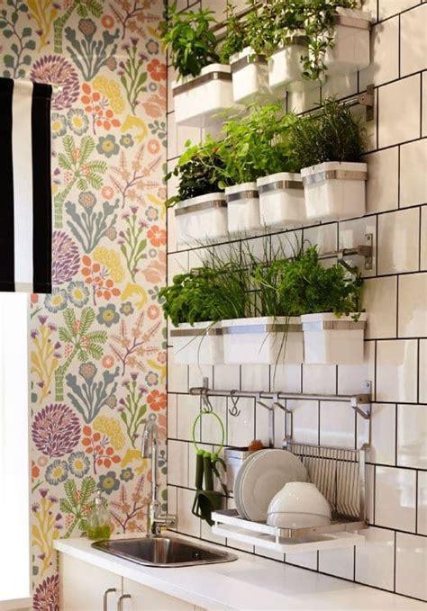 Vaso S Kitchen by 12 Ideias Para Plantar Ervas E Temperos Na Sua Cozinha