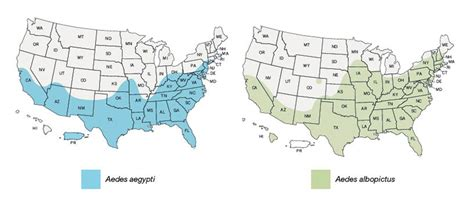 mosquito map usa some facts about mosquitoes pocket ranger 174