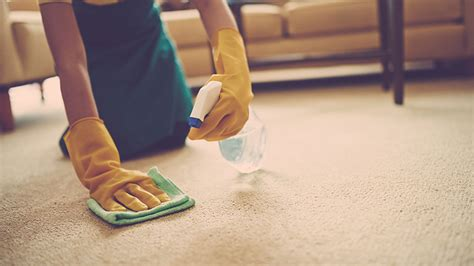 cheap sofa cleaning cheap carpet cleaning services singapore carpet nrtradiant