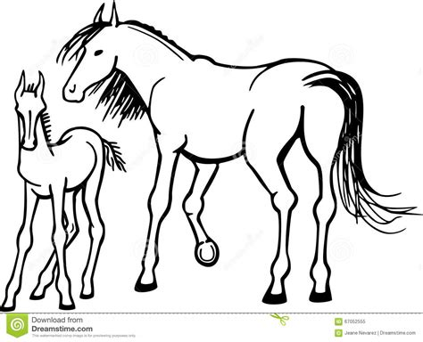 mare clipart mare and foal stock vector image 67052555