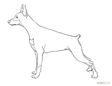 puppy pictures to draw drawing dogs pictures cliparts co