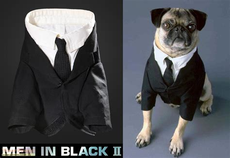frank the pug costume in black ii frank the pug publicity costume original costume