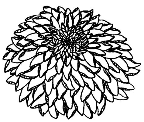 chrysanthemum mouse coloring page chrysanthemum character coloring pages coloring pages