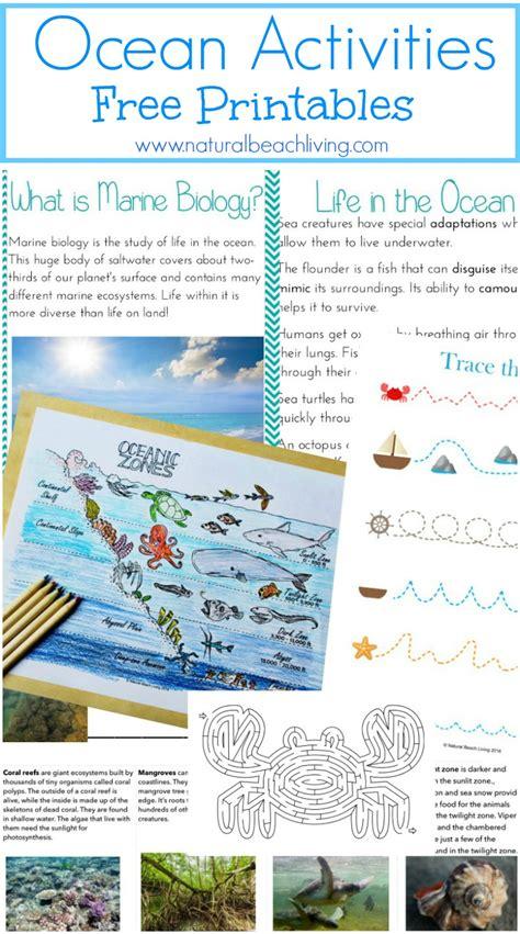 printable ocean games free ocean unit study with printables homeschooling world