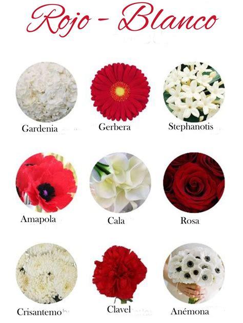 imagenes de flores y sus nombres tipos de flores y sus nombres pictures to pin on pinterest