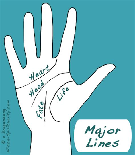 lines in palmistry reading major top 10 basic palm reading guidelines top inspired
