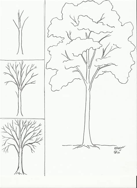 easy drawings of trees draw a tree class ideas