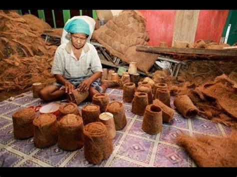 Jual Sabut Kelapa Coconut Fiber coconut fiber extracting machine mesin pengupas sabut
