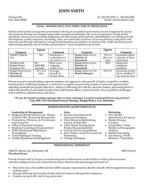 sle resume director information technology resume ixiplay free resume sles