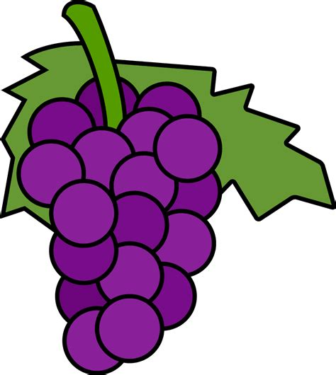 animated templates free grapes cliparts the cliparts