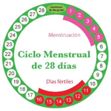 calendario menstrual de la mujer arriba salud