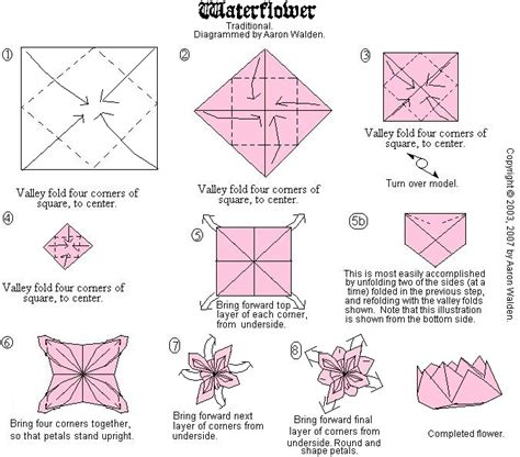 Origami Water Flower - origami my classes