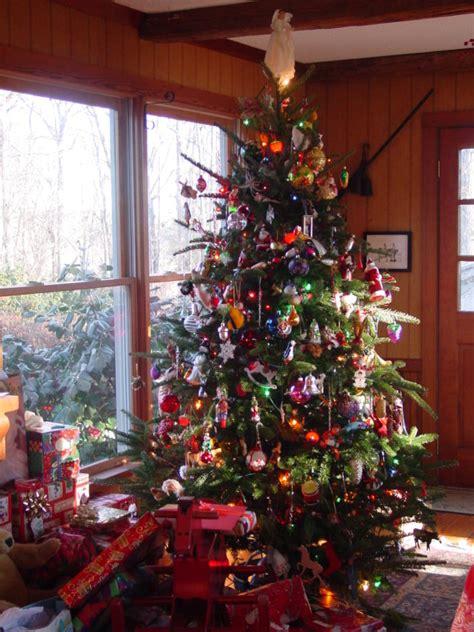 safety tips  enjoying  christmas tree home