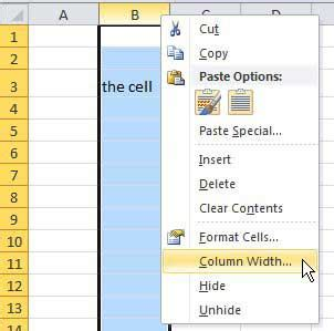excel course cell size and formatting how to size different cells in excel how to set cell