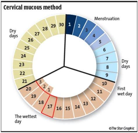What Calendar Method Rhythm Method Chart Safe Method Rhythm Method Of Birth
