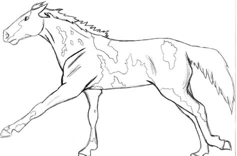 coloring pages of paint horses paint or pinto by angry wolf for on deviantart